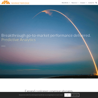 MarketBridge – Breakthrough Go-to-Market Performance