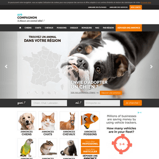 Annonce Animaux acheter, vendre, adopter, elevage unCompagnon.fr