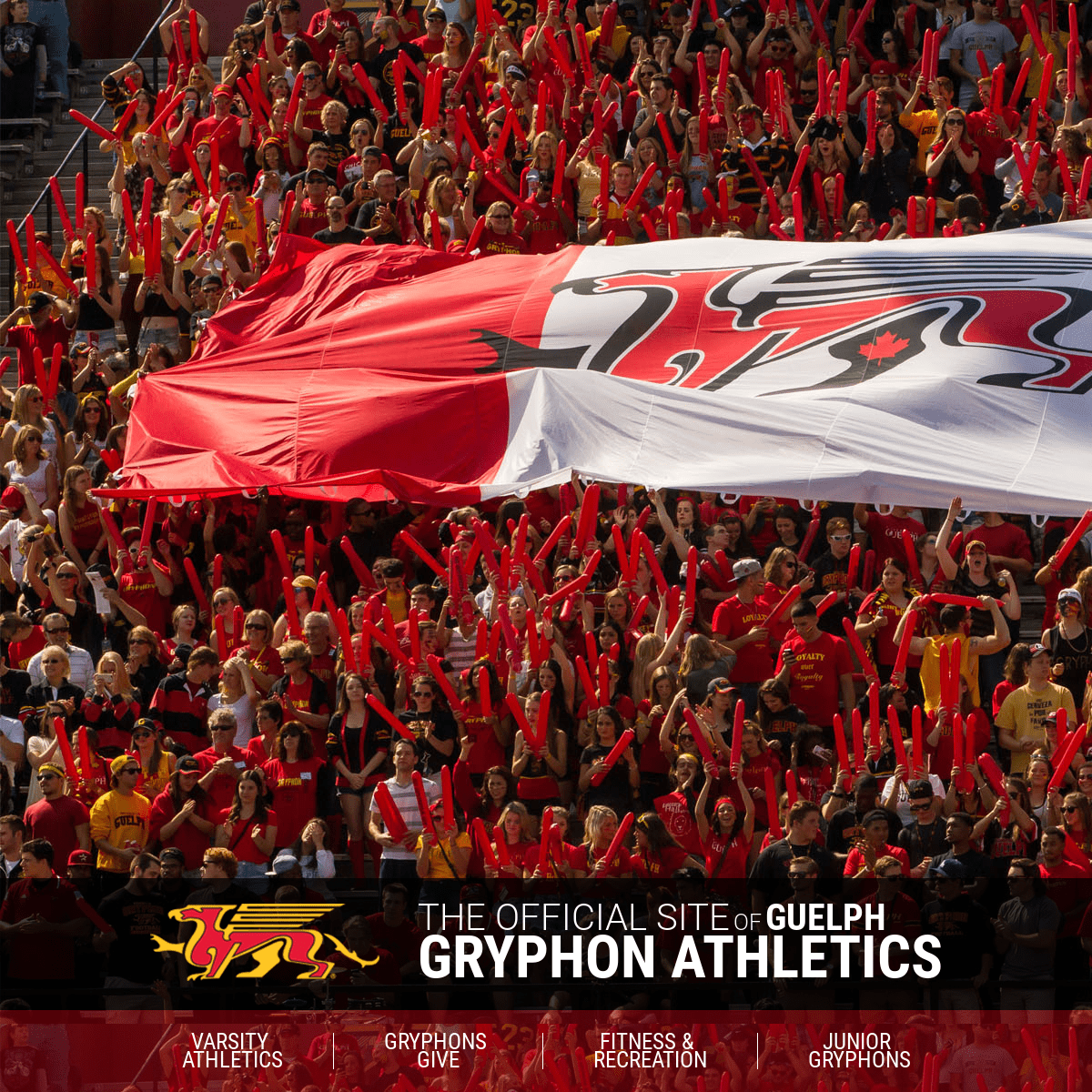 ArchiveBay.com - gryphons.ca - Guelph Athletics Landing Page