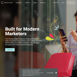 Solutions for Modern Marketers - Cheetah Digital