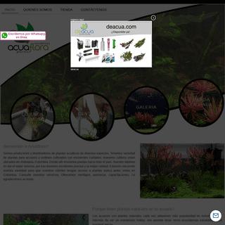Acuaflora - plantas acuáticas - plantas acuáticas Colombia - Plantas de Acuario - Plantas para Acuario - Acuarios Plantados -