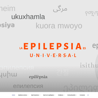 Ápice Epilepsia - ¿Que es la Epilepsia-