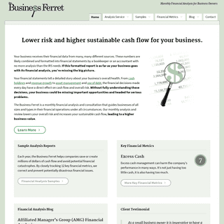 Monthly Financial Analysis by The Business Ferret -