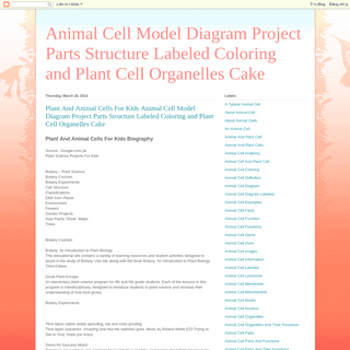 Animal Cell Model Diagram Project Parts Structure Labeled Coloring and Plant Cell Organelles Cake
