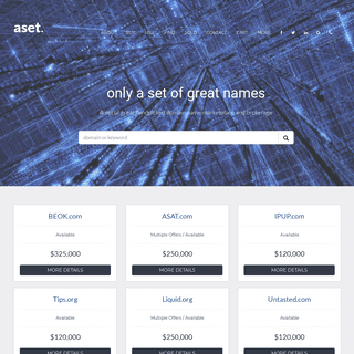 only a set of great handpicked domain names - aset.com