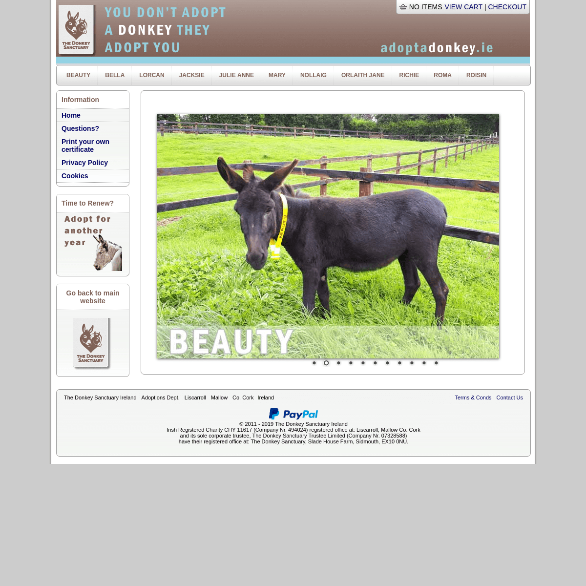 Adopt a Donkey in Ireland