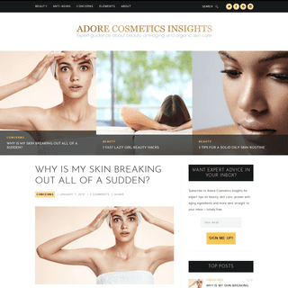 Adore Cosmetics Insights -