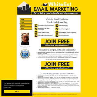 Whitelist email marketing is simple, safe and successful email marketing