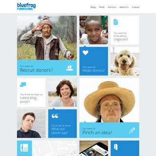 Home - Bluefrog Fundraising - Specialist fundraising agency based in London
