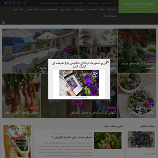گلهای شما همچنان میخندند - جامع ترین ژورنال گل و گیاه ایران