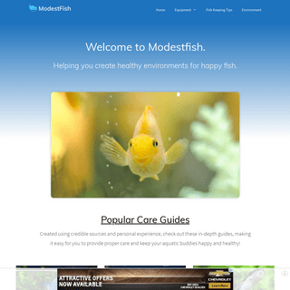 ModestFish- Be Informed, Educated, And Entertained With All Things Fish