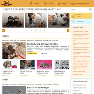 Портал для любителей домашних животных- советы и рекомендации
