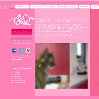 PURR Cat Cafe, Brighton & Boston