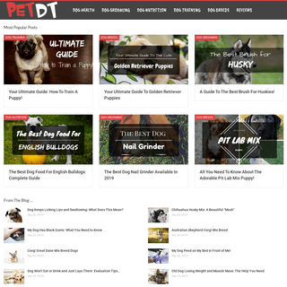 ArchiveBay.com - petdt.com - PetDT - Your Resource for Everything Dog and Beyond