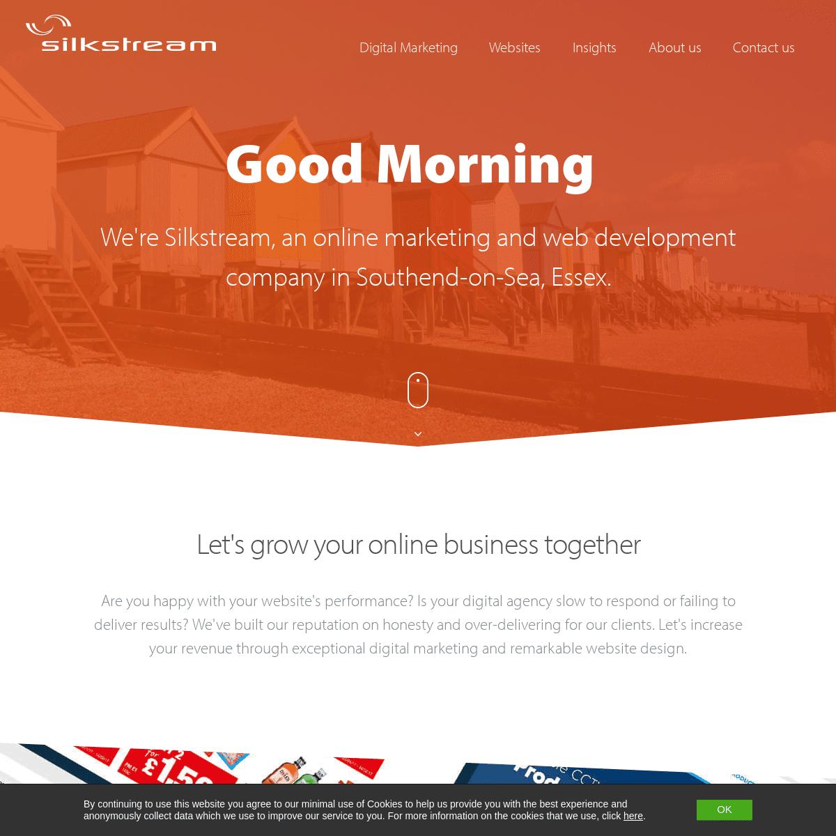 Web Design & SEO Southend & Professional Website Design in Southend, Essex