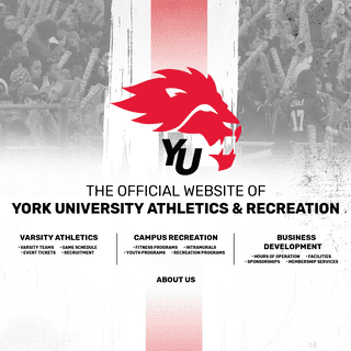 The Official Website of York University
