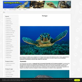 ArchiveBay.com - tortugaswiki.com - Tortugas- guía de especies, información básica, fotos y dibujos.