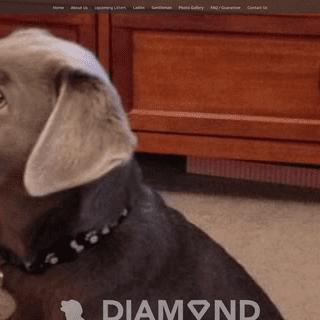 Diamond in the Ruff Kennel - Labs