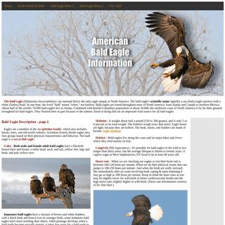 Bald Eagle Information & Photos - American Bald Eagle Information