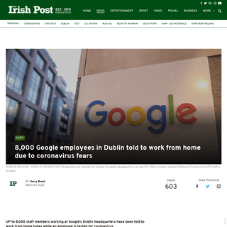 8,000 Google employees in Dublin told to work from home due to coronavirus fears - The Irish Post