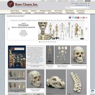 Bone Clones, Inc. - Osteological Reproductions