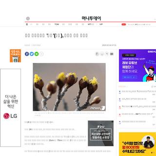 봄의 시작이라는 '입춘'(立春), 유난히 추운 이유는 - 머니투데이 뉴스