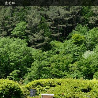 世界最古の宿・ギネス認定 - 全館源泉掛け流し 西山温泉 慶雲館