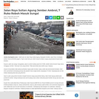 Jalan Raya Sultan Agung Jember Ambrol, 7 Ruko Roboh Masuk Sungai - beritajatim.com
