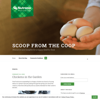 The Scoop from the Coop - Resources and insights for a happy, healthy flock