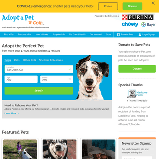 Adopt a dog or cat today! Search for local pets in need of a home.