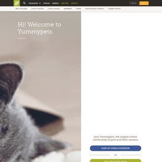 Yummypets, the social petwork, community for pet lovers!