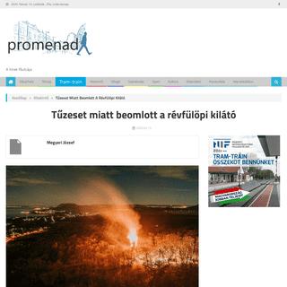 Tűzeset miatt beomlott a révfülöpi kilátó - A hírek főutcája