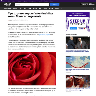 Tips to preserve your Valentine's Day roses, flower arrangements