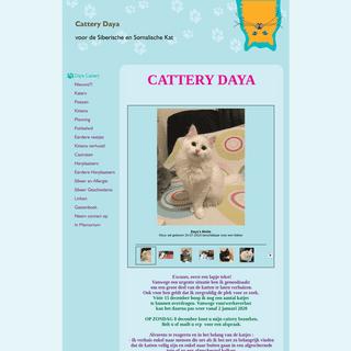 Cattery Daya - Daya Cattery