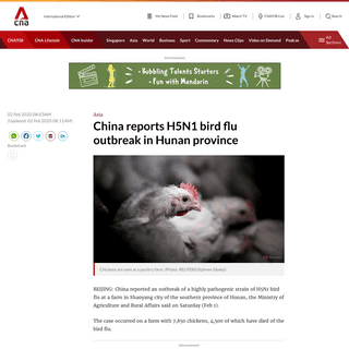 China reports H5N1 bird flu outbreak in Hunan province - CNA