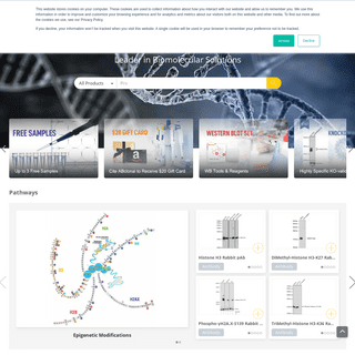Antibody - Protein - Peptide - ELISA - Gene - ABclonal