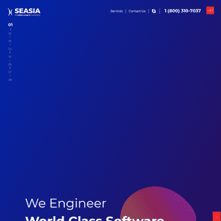Web and Mobile App Development Company, Custom Software Development