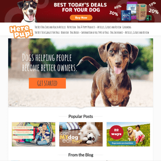 A Dog Blog