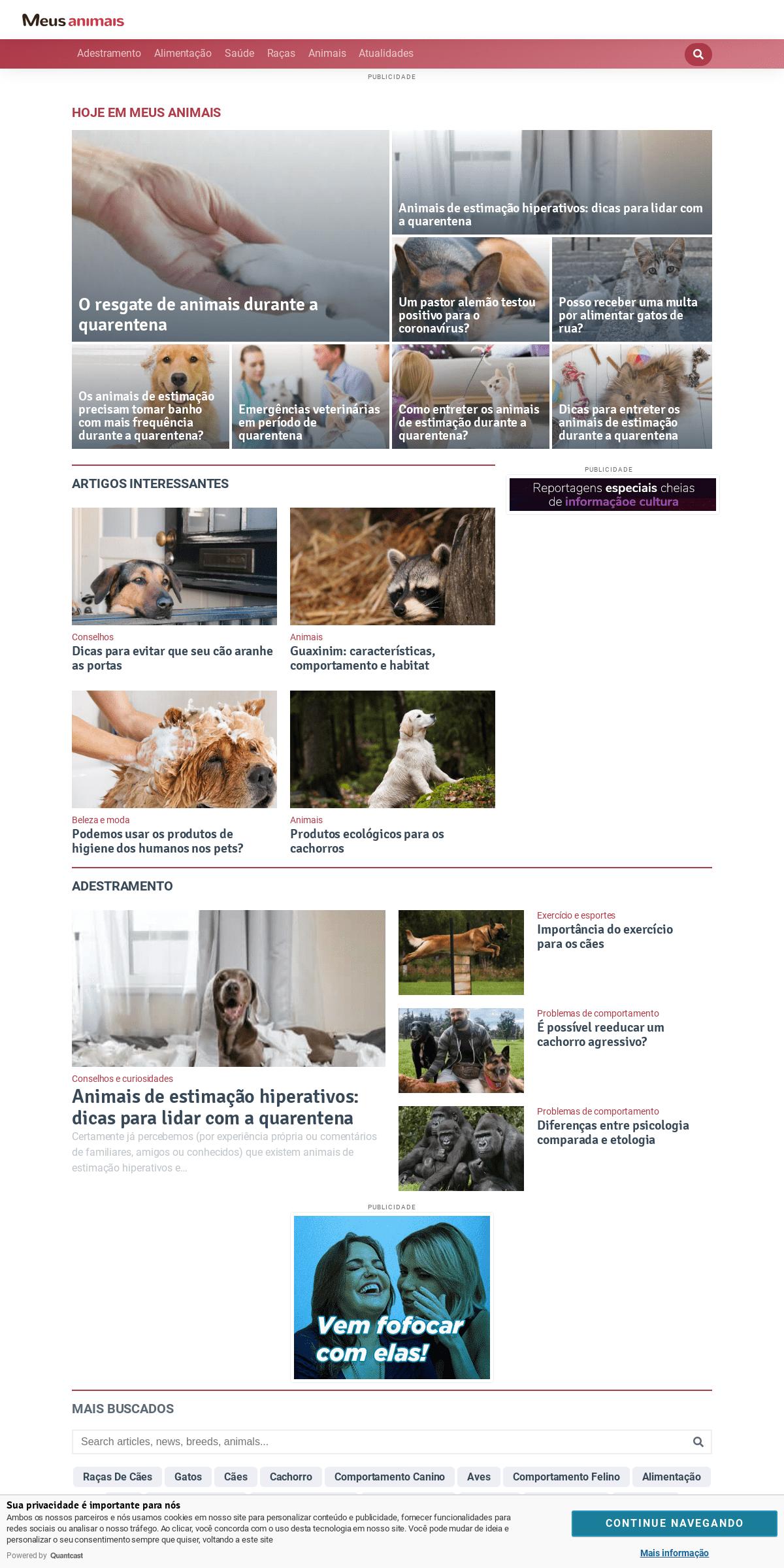 Meus Animais — Blog sobre conselhos, cuidados e tudo relacionado ao mundo animal