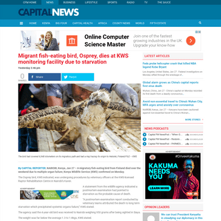 Migrant fish-eating bird, Osprey, dies at KWS monitoring facility due to starvation » Capital News