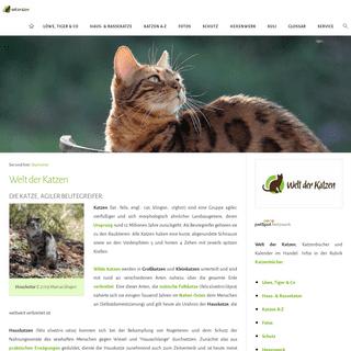 Welt der Katzen- Katzenforschung - Katzenwissen - Katzenhaltung