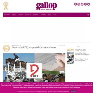 Konie, jeździectwo, jazda konna, opieka nad koniem - Gallop.pl