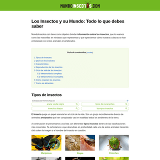 ▷ Tipos de Insectos (Qué Son y Características) - Mundo Insectos