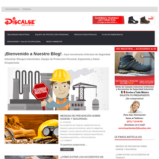 Blog de Seguridad Industrial - Discalse