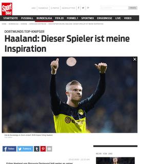 BVB-Knipser Erling Haaland- Dieser Spieler ist meine Inspiration - BORUSSIA DORTMUND - SPORT BILD