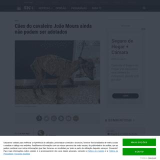 SIC Notícias - Cães do cavaleiro João Moura ainda não podem ser adotados