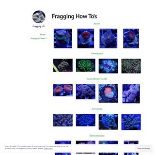 Fragging 101