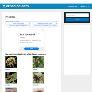 Principal - Erradica.com