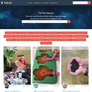 TikTok Viewer Users, Videos, Tags, Musics - Tokvid TikTok Viewer