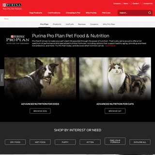 Pro Plan Dog Food and Cat Food - Purina